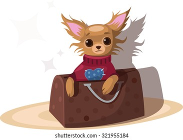 Small dog in the women's handbag. Chihuahua. Vector illustration.