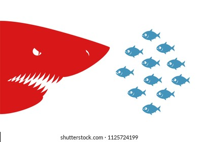 Small fishes and shark