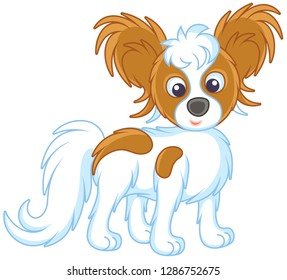 Small funny dog Papillon friendly smiling, vector illustrations in a cartoon style