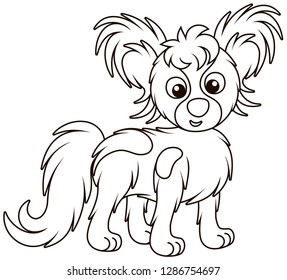 Small funny dog Papillon friendly smiling, black and white outline vector illustrations in a cartoon style for a coloring book