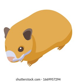Small hamster icon. Isometric of small hamster vector icon for web design isolated on white background