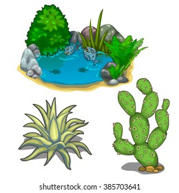 A small lake with fish, agave and prickly pear cactus. Plants and water for landscaping. Vector illustration.