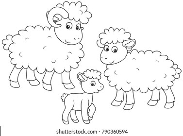 A small lamb, a sheep and a ram, a black and white vector illustration in cartoon style for a coloring book