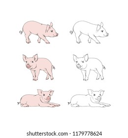 small pigs drawings set