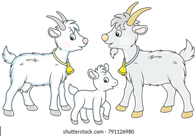 A small white kid, a goat and a he-goat, a vector illustration in funny cartoon style