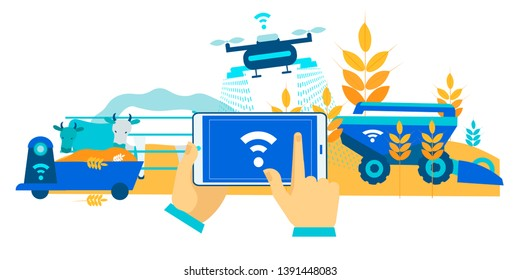 Smart Farm Hay Collection for Cows Cartoon Flat. In Foreground, Hands are Holding Smartphone with Application Manager Drone. Unmanned Tractor Harvesting. Automated Cow Feeder. Vector Illustration.