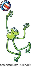 Smiling flexible frog playing volleyball, jumping and preparing to vigorously hit the ball and go for an overhead smash