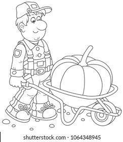 Smiling gardener carrying a big pumpkin in his barrow, a black and white vector illustration in a cartoon style for a coloring book