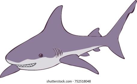 Smiling shark illustration