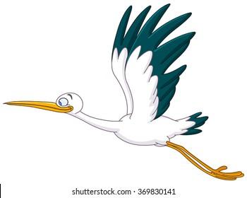 Smiling Stork flying