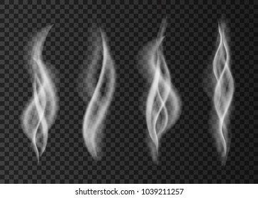 Smoke  from a cup of coffee or tea.White steam  isolated on transparent background.  Realistic  vector texture.