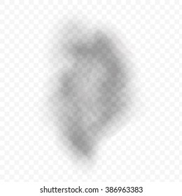 Smoke vector texture for white and bright backgrounds. Beautiful soft fire cigar effect vector eps10. Smooth gray grey gray smoke on transparent background. Cloudy smoke concept for design projects.