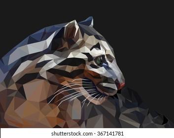 smoky Jaguar