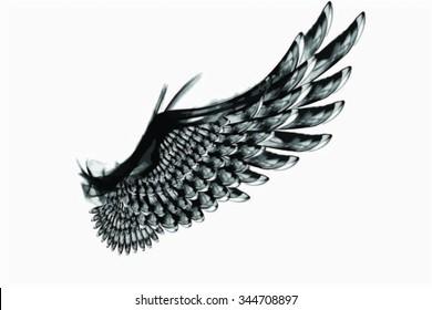 Smoky Vector Black Wing