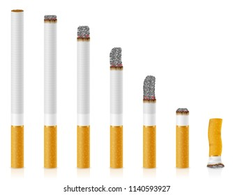 smoldering cigarettes of different lengths stock vector illustration isolated on white background