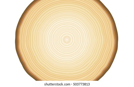 Smooth tan and brown radial tree rings in a pattern showing growth and layers as a background on white