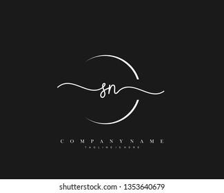 SN initial handwriting logo template vector