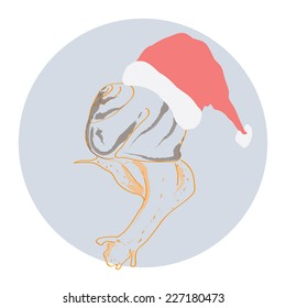 Snail in a Christmas hat. Vector.