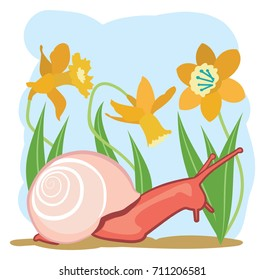 Snail in a field of daffodils