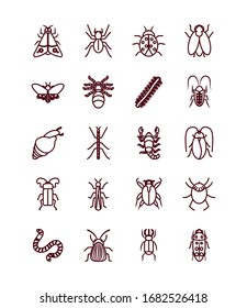 snail and insect concept icon set over white background, line style, vector illustration