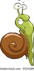 Snail on a white background, vector illustration
