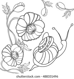 Snail and poppy. Black-and-white illustration. Sketch for coloring book page with doodle elements.