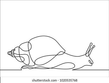 snail-continuous line drawing