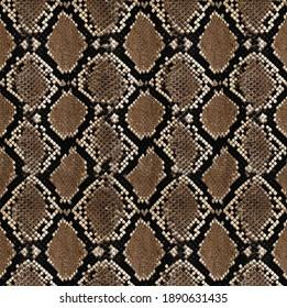 Snake brown pattern desıgn prınt