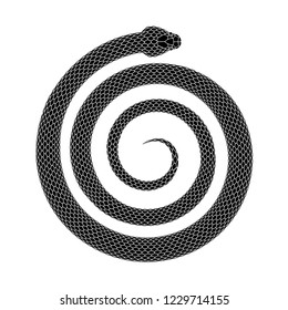 Snake coiled in a spiral shape. Serpentine helix tattoo design. Vector illustration isolated on a white background.