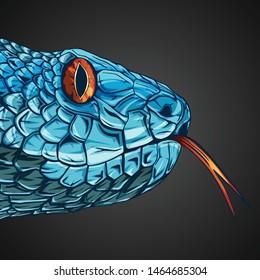 snake head illustration art vector