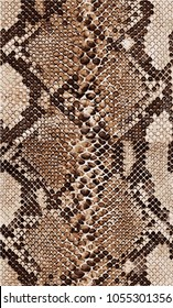 Snake pattern and animal pattern