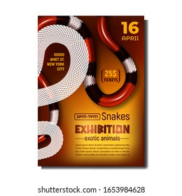 Snakes Exhibition Exotic Animals Poster Vector. Coral Snake, Poisonous And Danger Mammal Snakes. Coiled Wild Black, White And Red Skin Viper. Crawling Dangerous Reptile. Realistic 3d Illustration