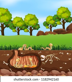 Snakes living in underground  illustration
