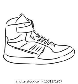 sneaker sketch, contour vector illustration