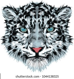 Snow leopard - vector art