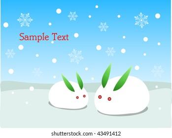 snow rabbit