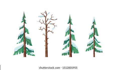 Snow-capped spruces flat vector illustrations set. Old dry tree with leafless, bare branches isolated on white background. Evergreen firs covered with snow. Winter season flora cliparts collection