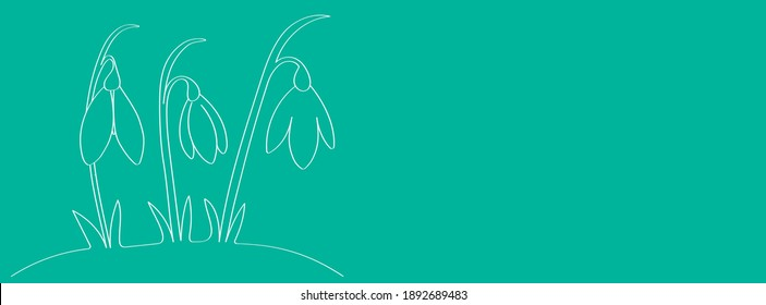Snowdrops are the first spring flowers of the forest, a template for a beautiful Easter greeting card in the style of doodle. White outline drawing for children's coloring, a sample for a web screensa