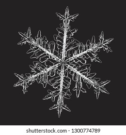 Snowflake isolated on black background. Vector illustration based on macro photo of real snow crystal: elegant stellar dendrite with hexagonal symmetry, complex ornate shape and intricate pattern.