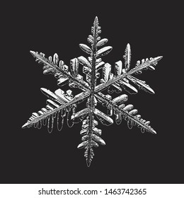 Snowflake isolated on black background. Vector illustration based on real snow crystal at high magnification: elegant stellar dendrite with thin complex arms, ornate shape and glossy, relief surface.