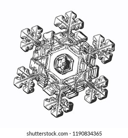 Snowflake isolated on white background. This vector illustration based on macro photo of real snow crystal: elegant stellar dendrite with relief surface, large central hexagon and short, broad arms.