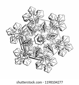 Snowflake isolated on white background. This vector illustration based on macro photo of real snow crystal: star plate with six short, broad arms, glossy surface and complex inner details.