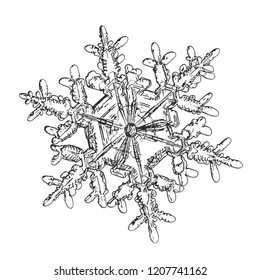 Snowflake isolated on white background. This vector illustration based on macro photo of real snow crystal: complex stellar dendrite with fine hexagonal symmetry, ornate shape and six elegant arms.
