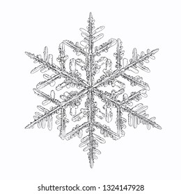 Snowflake isolated on white background. Vector illustration based on macro photo of real snow crystal: complex stellar dendrite with fine hexagonal symmetry, ornate shape and six thin, elegant arms.
