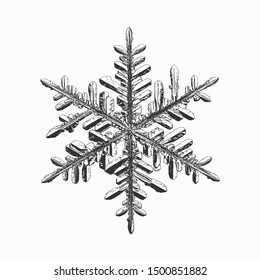 Snowflake isolated on white background. Vector illustration based on real snow crystal: beautiful stellar dendrite with hexagonal symmetry, complex details, elegant arms and glossy, relief surface.