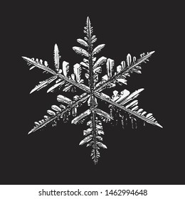Snowflake on black background. Vector illustration based on real snow crystal at high magnification: elegant stellar dendrite with thin, beautiful arms, complex structure and glossy, relief surface.