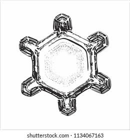 Snowflake on white background. This vector illustration based on macro photo of real snow crystal: simple star plate with short arms and large, flat central hexagon with ring pattern of tiny dots.