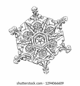 Snowflake on white background. Vector illustration based on macro photo of real snow crystal: beautiful star plate with fine hexagonal symmetry, six short, broad arms and complex inner details.