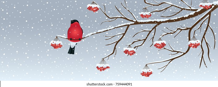 Snowy Christmas background with a bird and rowan tree branch. Vector illustration.