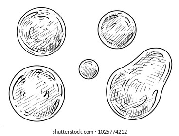 Soap bubble illustration, drawing, engraving, ink, line art, vector